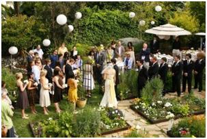 backdoor-wedding-1554246